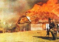В июне 1941 г. осуществленный панцер-дивизиями блицкриг привел к быстрому захвату плодородных земель Украины. Гитлер рассчитывал до зимы полностью разгромить Красную армию, но не успел.