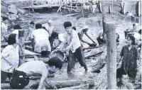 Большой скачок вперед обернулся сползанием назад. Весной 1958 г. 60 млн китайских крестьян были мобилизованы на осуществление гидротехнических проектов в сельской местности, однако результатом стал голод.