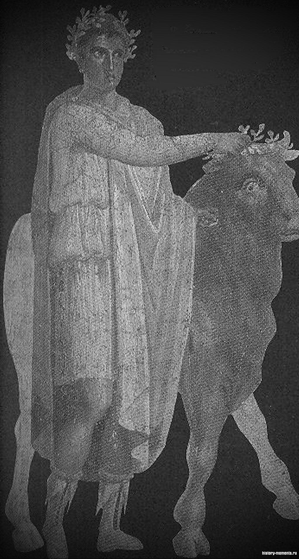 Жрец ведет быка к жертвеннику за пределами храма.