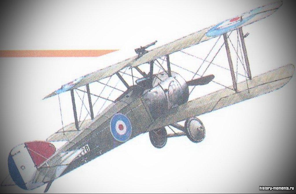 Бипланы были первыми самолетами, взятыми на вооружение.